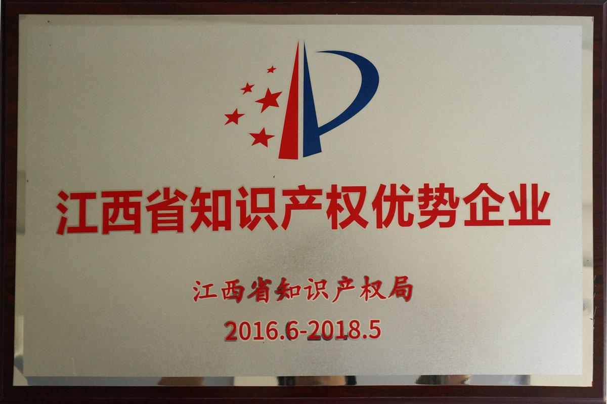 江西省知识产权优势企业